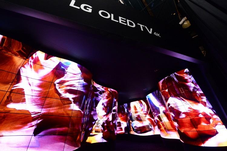 LG OLED Canyon_1