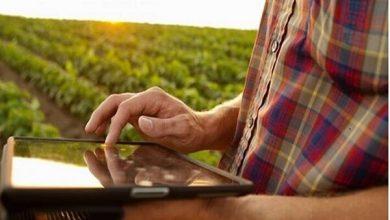 Photo of رویداد مجازی معرفی نیازهای فناورانه کشاورزی برگزار می شود